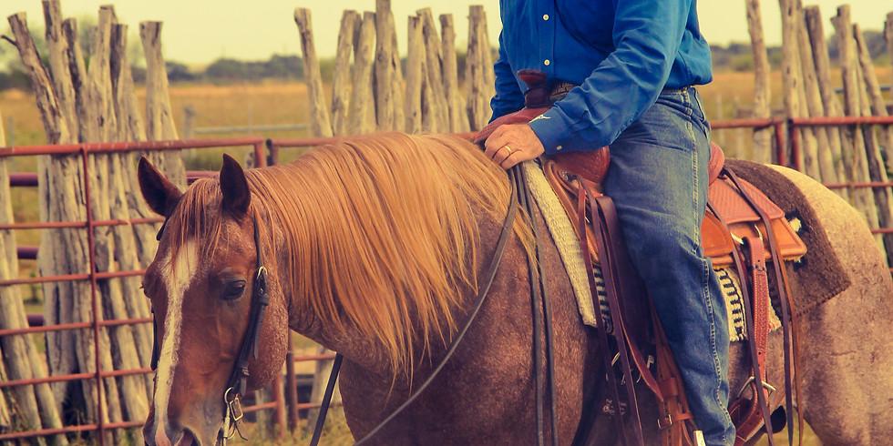 Van Hargis Intermediate Horsemanship Clinic Goffstown, NH