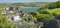 conwy.png