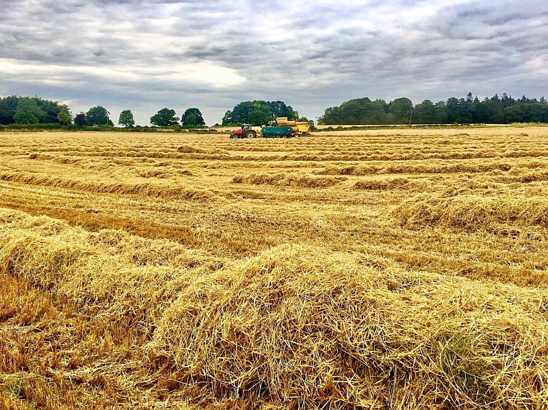 Barley combine