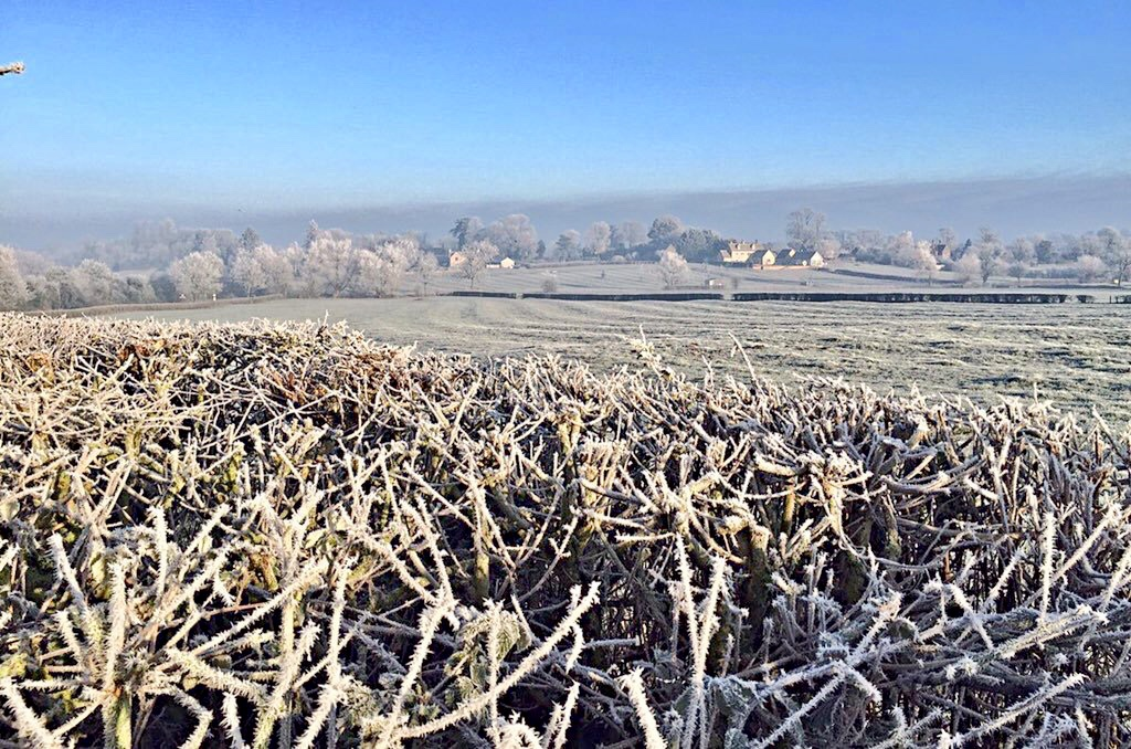 Frosty Morning on the Dale Farm