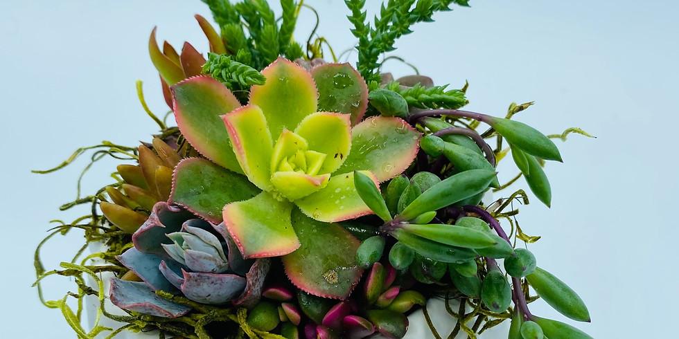 Spirited Pots Live Workshop (White Cactus Planter)