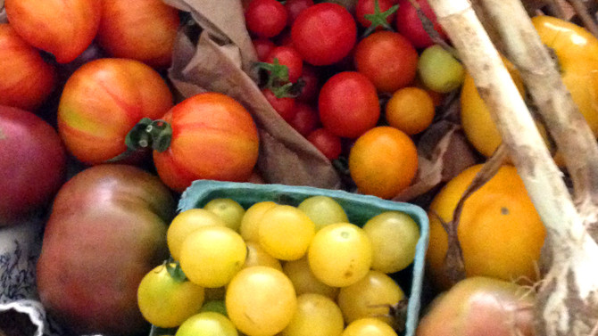Tomatoes, Melons, Summer Squashes....