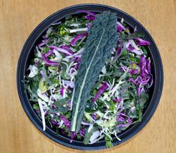 Tuscan Kale Cabbage Salad