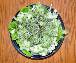 Butter LettuceMicro Salad