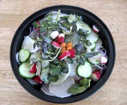 Radish Watercress Salad
