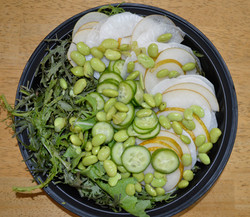 Mizuna Asian Pear Salad
