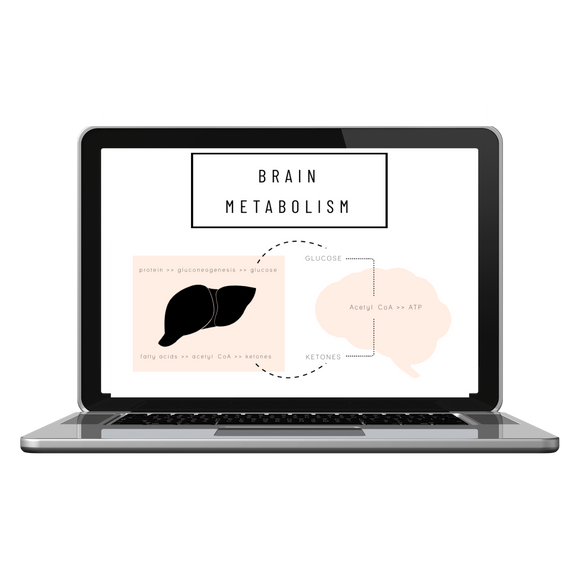 Brain Metabolism