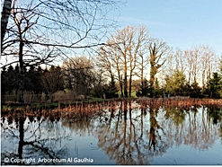 Arboretum Al Gaulhia - un des 5 étangs ; arboretum limousin