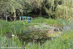 Arboretum Al Gaulhia - la mare ; arboretum limousin
