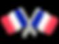 France-Flag-Transparent.png