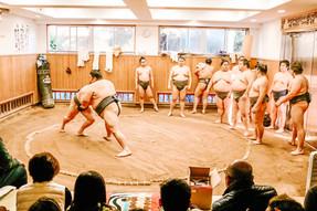 Sumo wrestling dojo practise tour tokyo japan travel guide travel blog