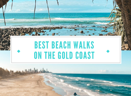 Top 4 Gold Coast Beach walks not to be missed: Scenic ocean views perfect for your instagram feed