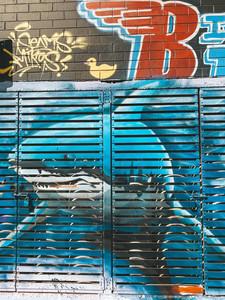 Darwin city Street art murals shark northern territory australia