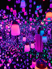 teamlab boarderless digital art museum forest of lights tokyo travel guide