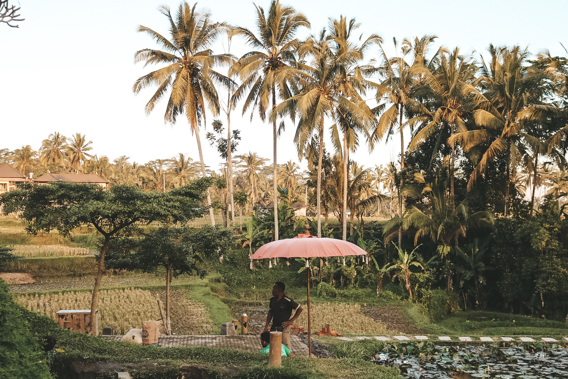 Green Kubu Cafe Bali Ubud travel guide best food best rice terrace views best cheap local eats blog