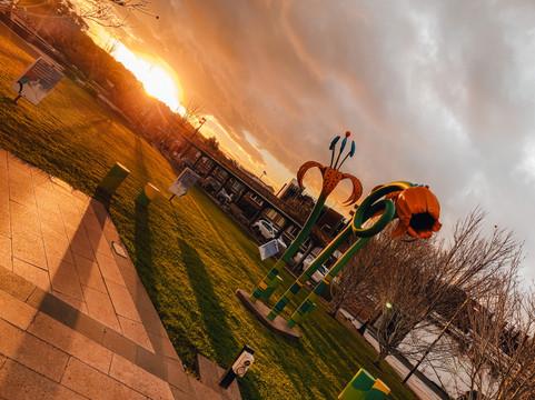 Toowoomba Council Gardens
