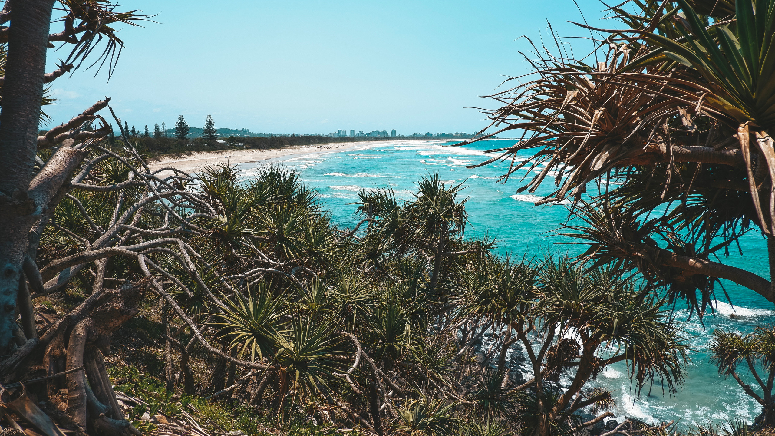 Fingal Head beach new south wales gold coast
