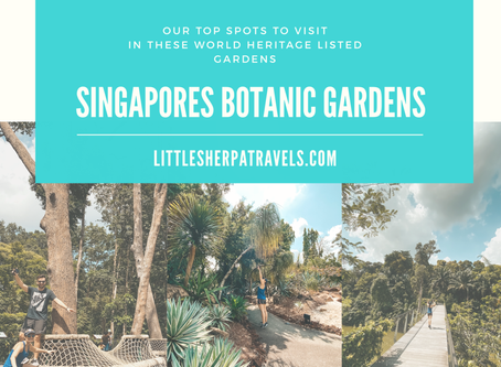 The top spots to explore during a visit to Singapores Botanic Gardens