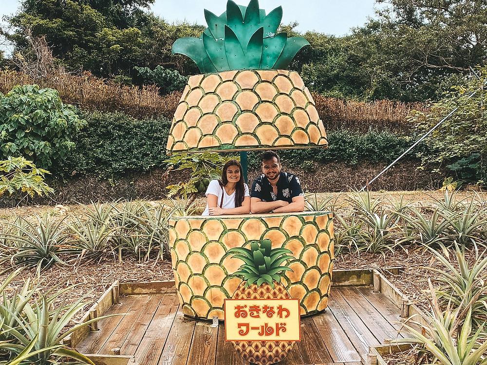 Pineapple okinawa world
