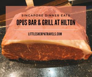 Opus Bar & Grill Hilton Hotel Singapore steak