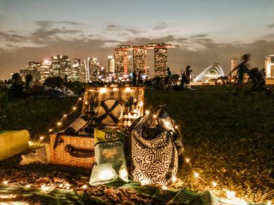 Singapore marina barrage city skyline view picnic