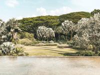 HortPark Southern Ridges walk Singapore
