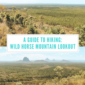 Wild Horse Mountain Lookout: A guide to the most scenic lookouts in the Sunshine Coast (with maps)