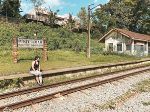 Singapore Green corridor greenway walk Bukit Timah Railway