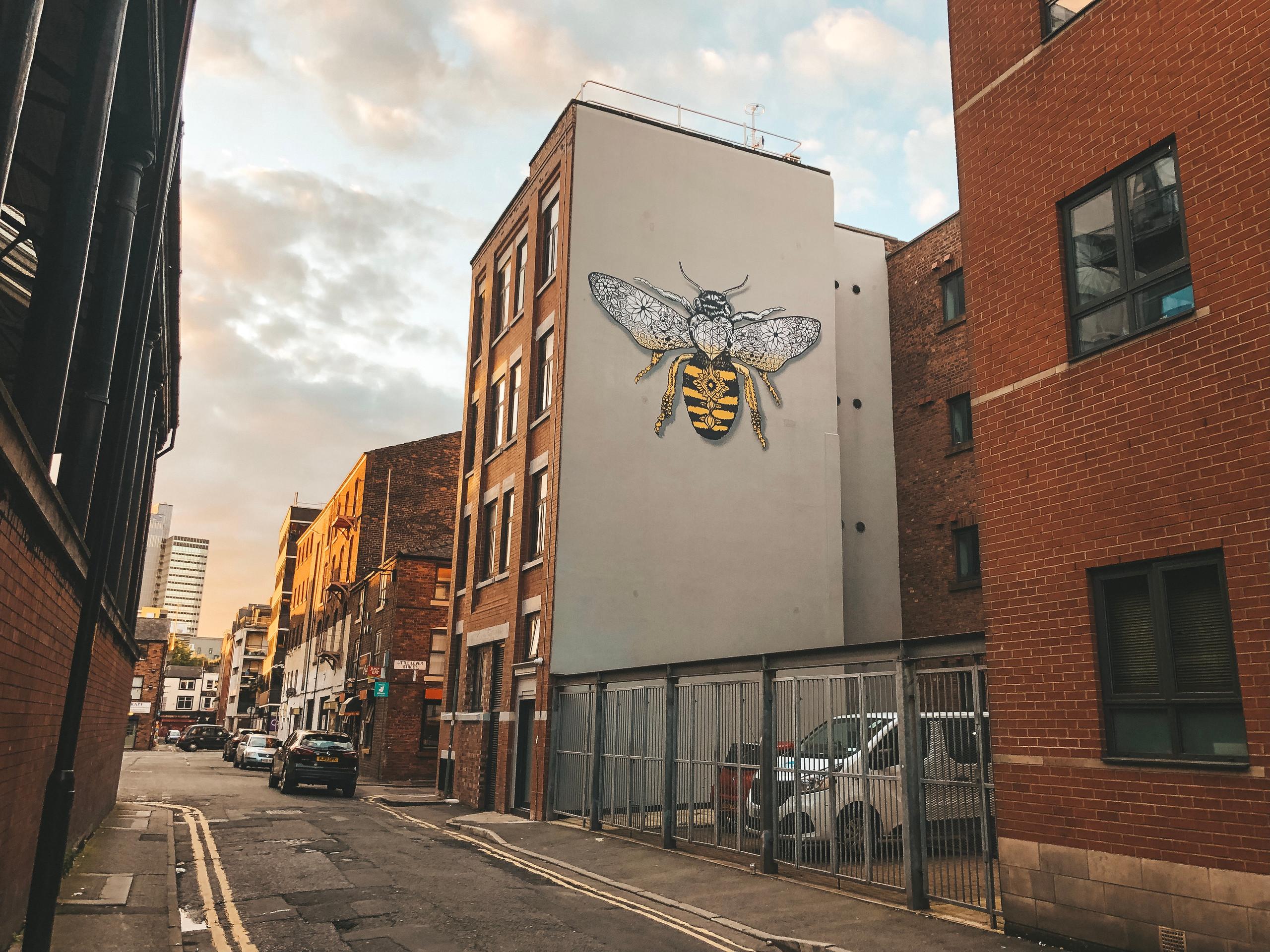 Northern quarter street art manchester bee