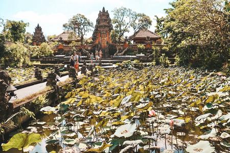 Sara Swati Ubud Palace Bali lotus ubud