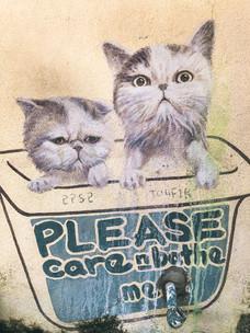 Georgetown Penang Malaysia street art cats