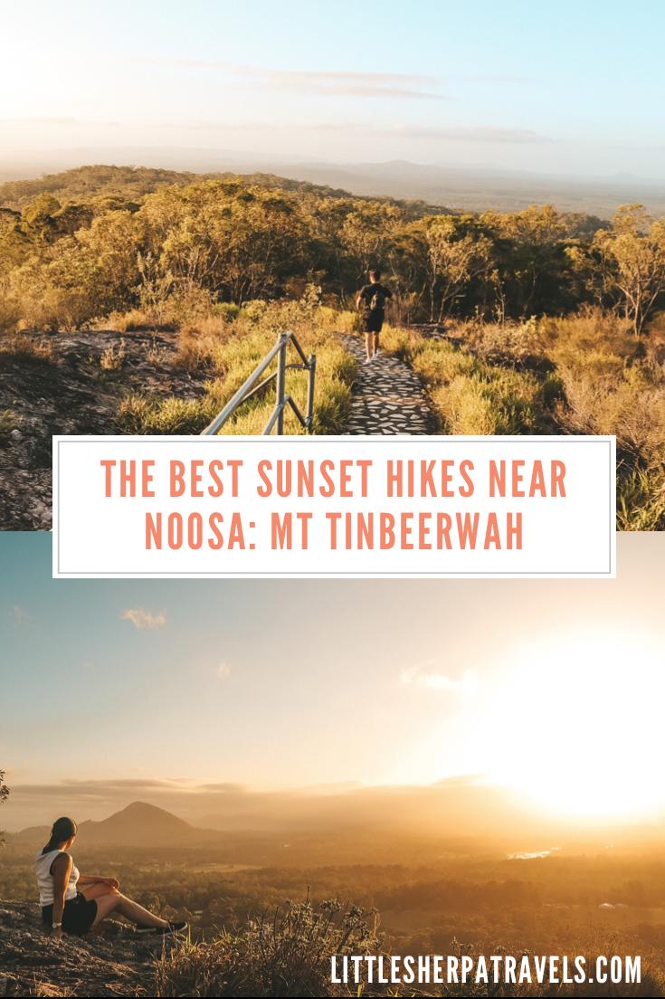 Mt Tinbeerwah Noosa Queensland hiking guide