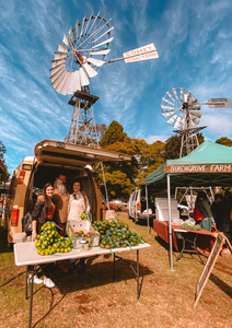 Tarzan Australian Survivor Toowoomba farmers markets