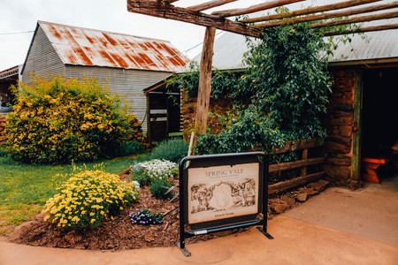 Spring Vale Vineyard Cellar Door Tasmania