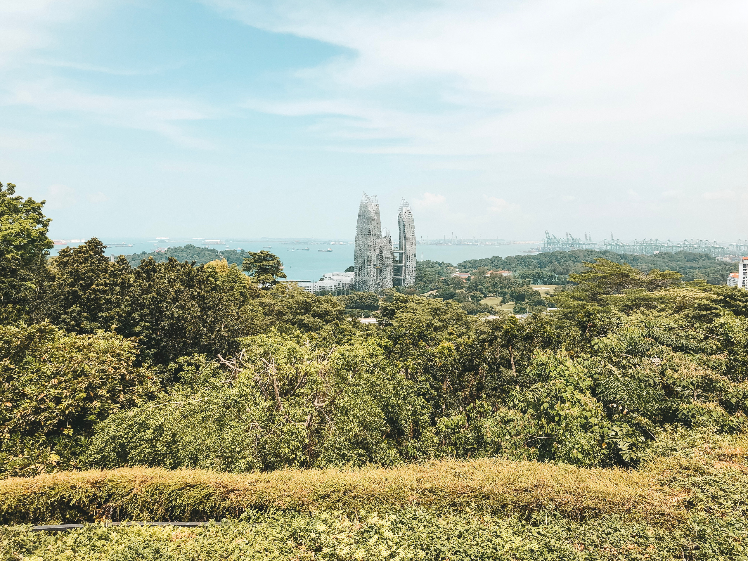 view from mount faber point lookout singapore southern ridges walk walking guide