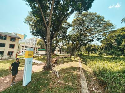 Singapore greenway green corridor national park walk Alexandria history