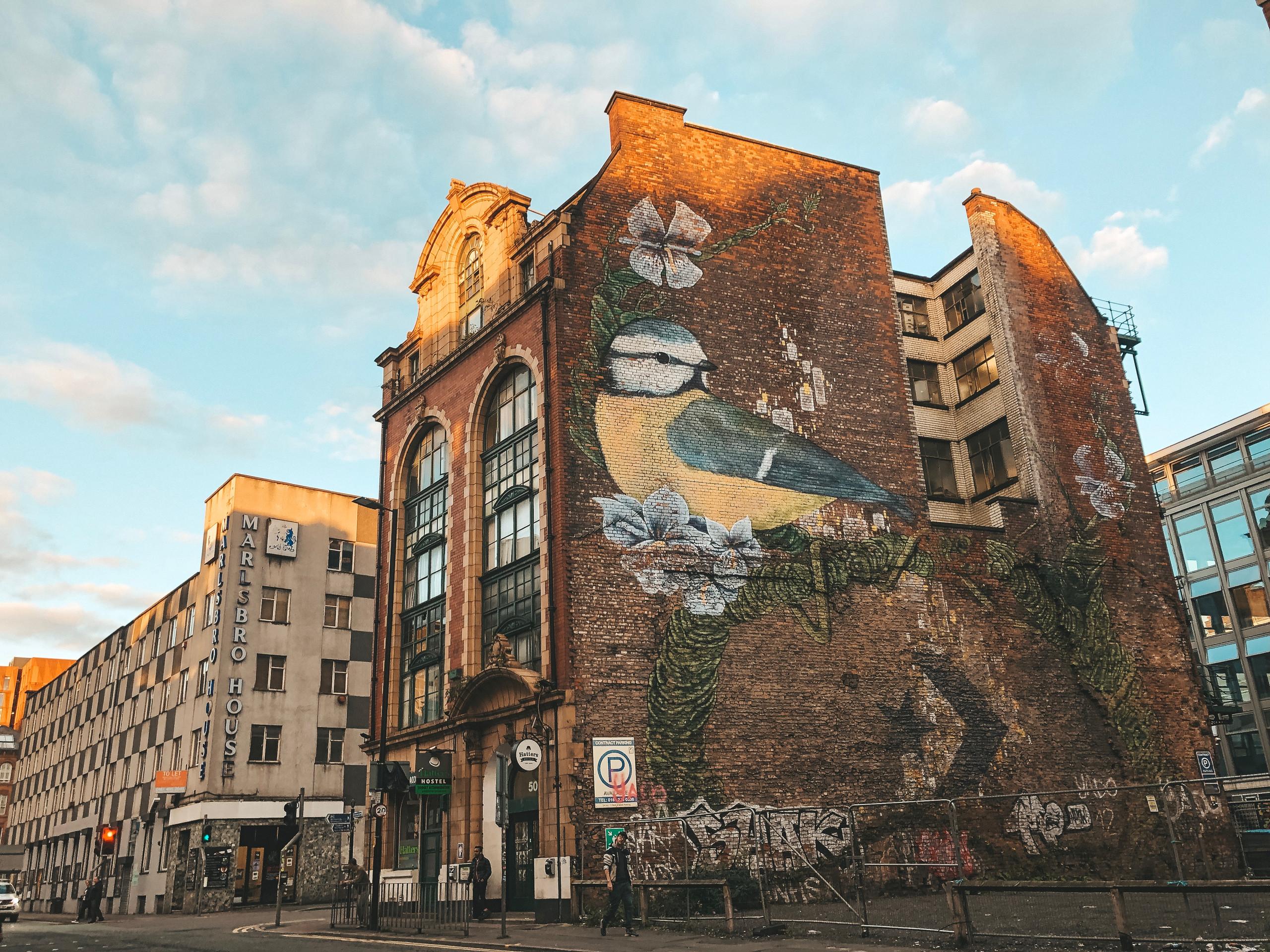 Northern Quarter street art bird manchester