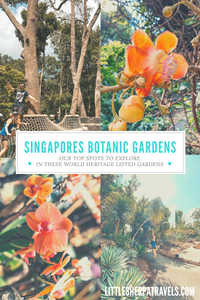 Top place to see in Singapores botanic gardens