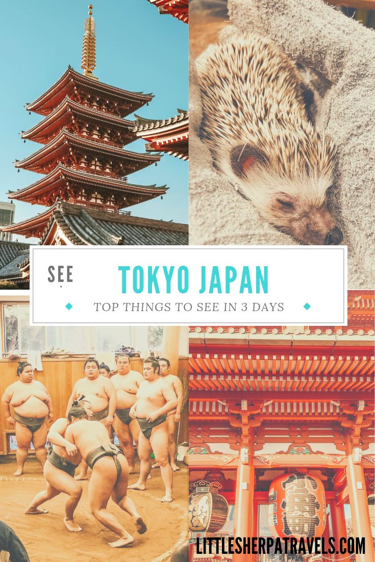 Top things to see in Tokyo in three days travel guide travel blog