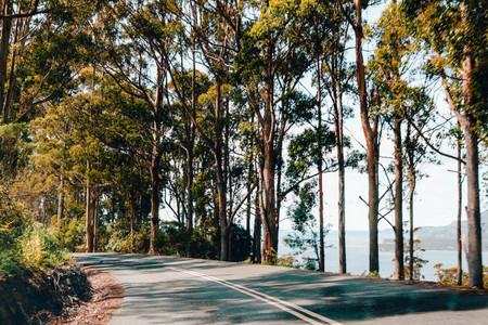 Hobart to Port Arthur Drive