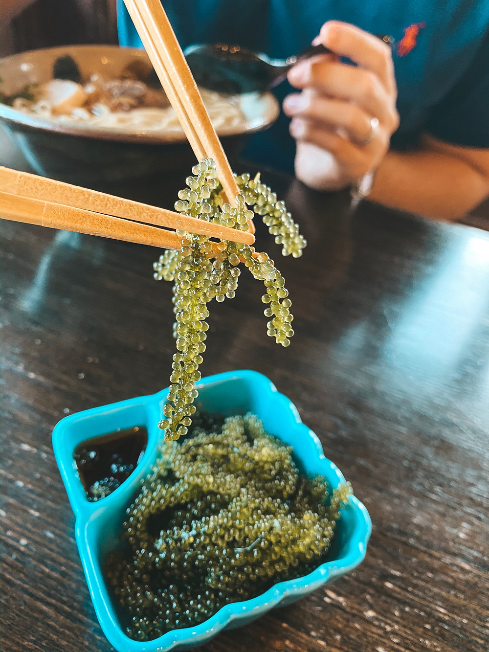 Okinawa Sea Grapes