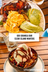 Goji Granola Bar Clear Island Waters Gold Coast