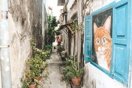 Georgetown Penang street art cats