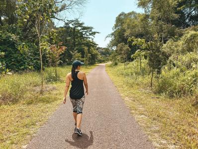 Singapore greenway green corridor national park walk