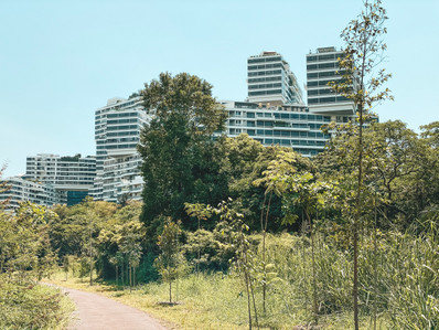 Singapore greenway green corridor national park walk Alexandria