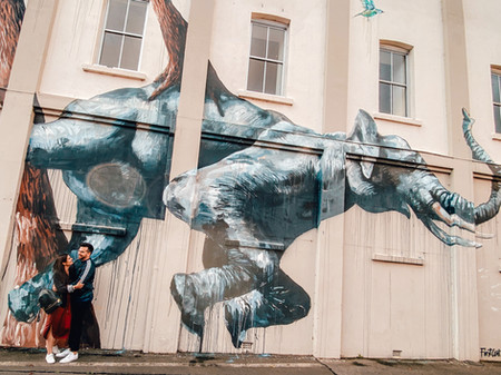 Elephant Mural street art Toowoomba