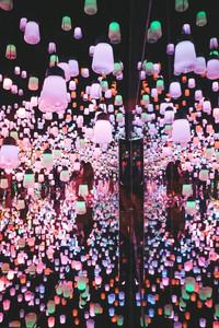 teamlab boarderless digital art museum tokyo travel guide