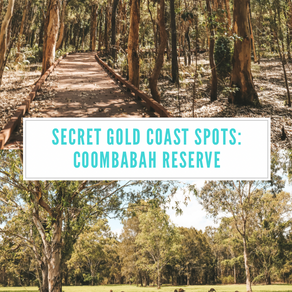 Secret Gold Coast Locations: Coombabah Lakelands  Reserve the best spot to see wild Kangaroos