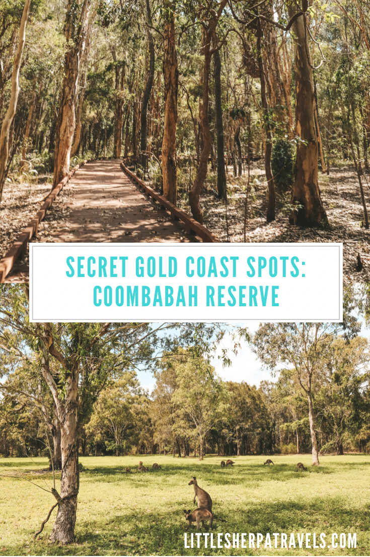 Coombabah Lakelands Conservation area guide