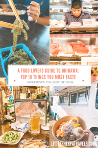 Top 10 must try local food in Okinawa Naha Japan